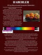 BİLİM DERGİSİ KİMYOLOJİ - Page 5