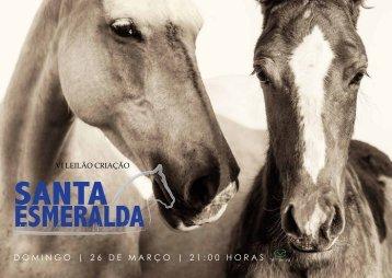 Catalogo Marcha News - VI Santa Esmeralda Novo