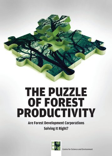 THE PUZZLE OF FOREST PRODUCTIVITY