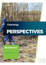 Greenergy's Perspectives