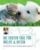 Fressnapf Magazin Alles für mein Tier Mai-Juni - Page 6