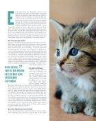 Fressnapf Magazin Alles für mein Tier Mai-Juni - Page 7