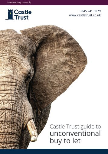 Castle Trust Guide to Unconventional Buy to Let