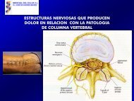epidurolisis epidurolisis - Medicina del Dolor
