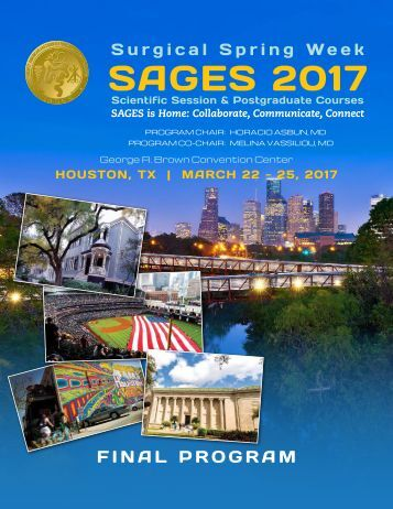 SAGES 2017