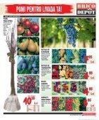 catalogue_baneasa - Page 3