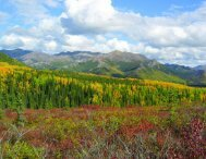 Ecological Overview - Alaska Resources Library