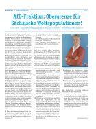 BlauePostNr.7-Dezember2016_Webaufloesung - Page 5