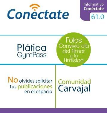 Conectate 61