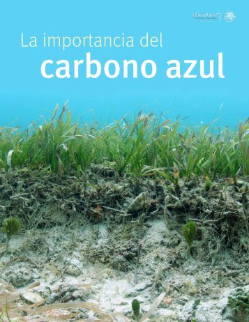carbono azul