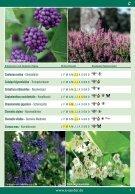 Bienengehölz   -  KATALOG 003 - DRUCK 13.02.2017 - Seite 3