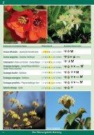 Bienengehölz   -  KATALOG 003 - DRUCK 13.02.2017 - Seite 4