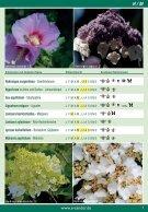 Bienengehölz   -  KATALOG 003 - DRUCK 13.02.2017 - Seite 7