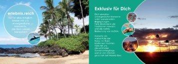 Aloha - Hawaii Reise mit Fortuna Academy