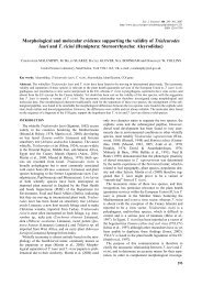 Morphological and molecular evidence supporting the validity of ...