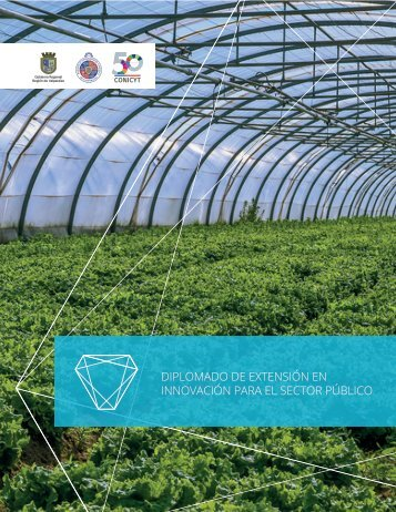 brochure-diplomado-extension-web