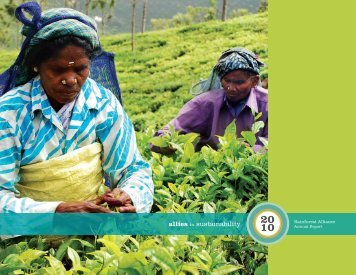 Annual Report - Rainforest Alliance