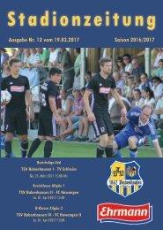 20170325 Stadionzeitung TSV Babenhausen - TV Erkheim
