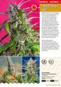 Sweet Seeds® 2017 - French - Page 7