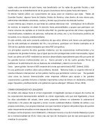 proyecto - Page 5