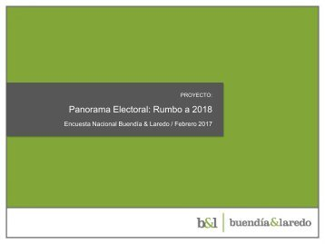 Panorama Electoral Rumbo a 2018