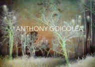 PORTFÓLIO ANTHONY GOICOLEA