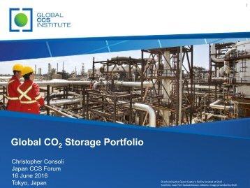 Global CO Storage Portfolio