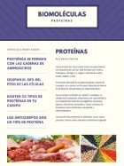 Proyecto Final 2.1 - Page 3