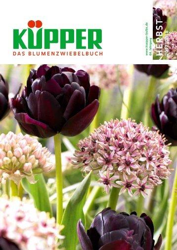 Küpper Katalog Herbst 2017