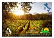 Brochure vini Oro delle Marche