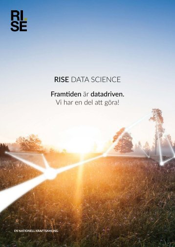 RISE DATA SCIENCE