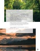 Momentum Magazine 2da edición  - Page 5