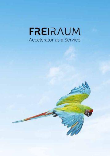 SCE Broschüre Freiraum Acceleration as a Service Deutsch