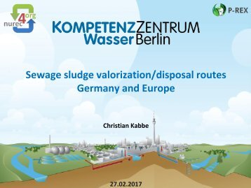 Sewage sludge valorization/disposal routes Germany and Europe