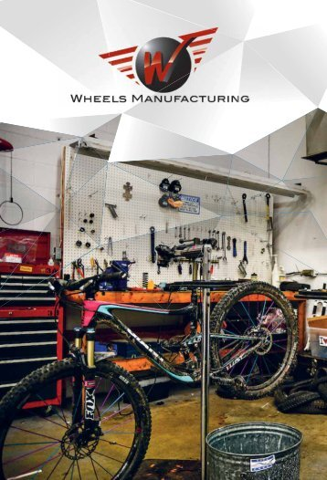 13 WHEELS_BIKEDIFUSION 2017-13