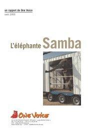 L' éléphante Samba