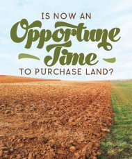 Is Now an Opportune Time to Purchase Land?