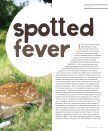 Spotted Fever - Page 2