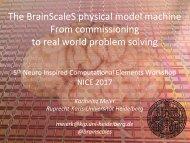 meier-brainscales-presentation