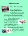 Pensamiento Asertivo - Page 4