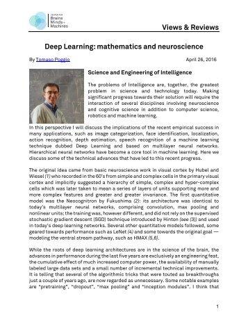 Views & Reviews Deep Learning mathematics and neuroscience