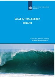 WAVE & TIDAL ENERGY IRELAND