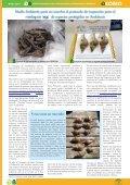 Inventario geoparques - Page 4