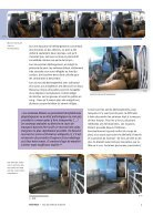 Les marchés de la honte - Page 7