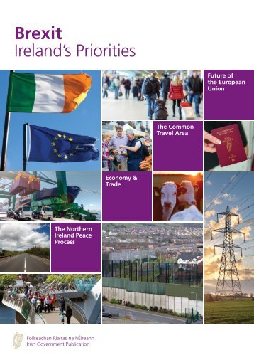 Brexit Ireland's Priorities