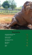 Relatório Anual - Zoológico de Brasíilia - Page 4
