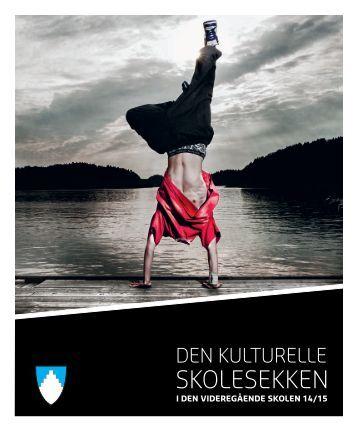 Katalog for VGS 2014/15
