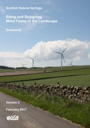 Siting and Designing Wind Farms in the Landscape