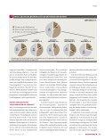 geschäftsmodelle stehen in den Sternen - Investors Marketing AG - Seite 6