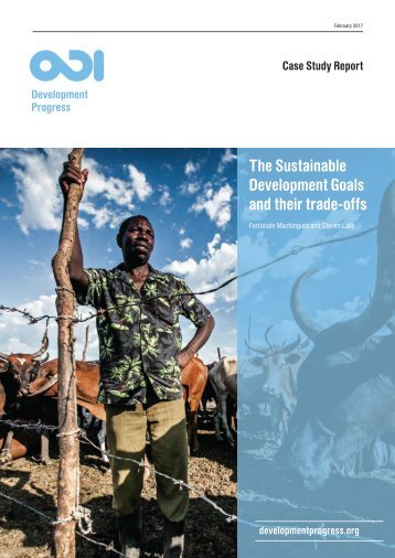 The Sustainable Development Goals and their trade-offs